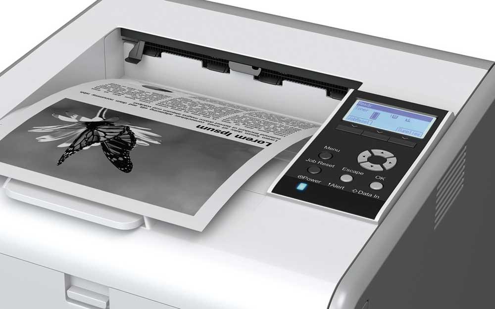 stampante Ricoh SP3600DN dettaglio